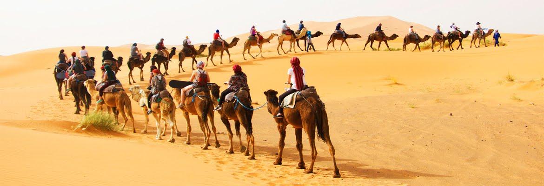 Morocco Tours Agency - Travel Company - Sahara Camel Trips