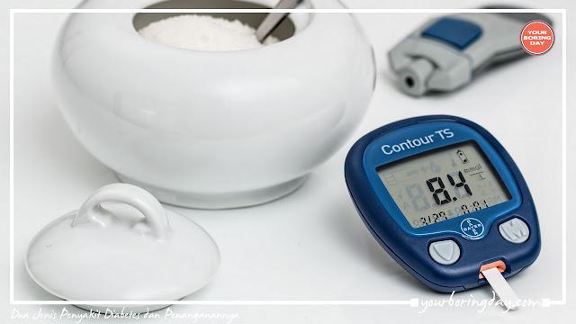 Jenis Penyakit Diabetes dan Penanganannya