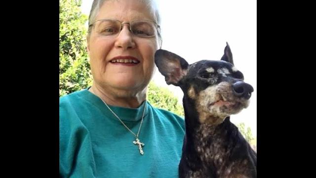 Она пришла в приют, чтобы забрать самую старую и никому ненужную собаку