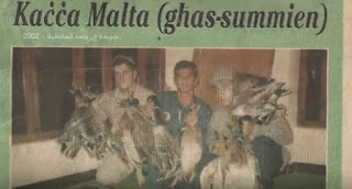 fayoum duck hunting