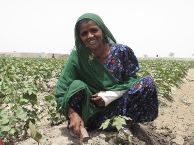 Haq's Musings: Working Women Seeding a Silent Social Revolution in
