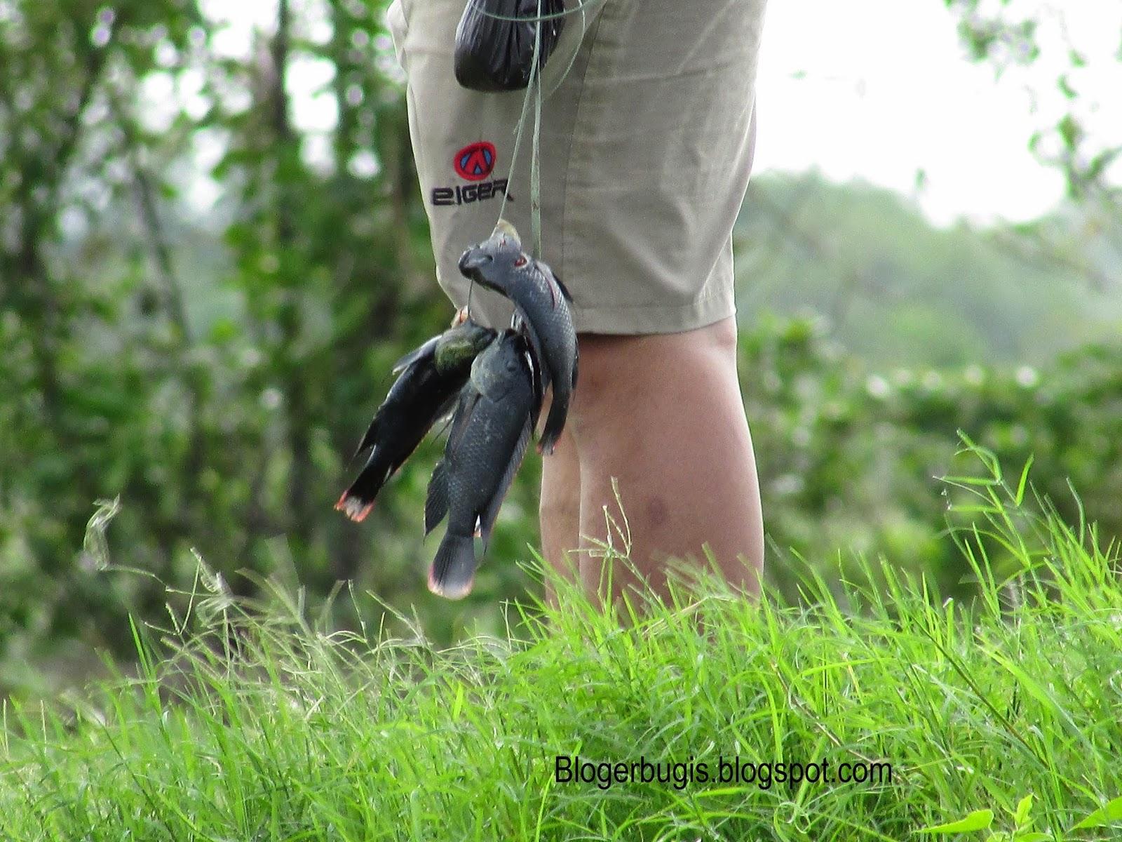 Tips Memancing dan Doa Memancing Ikan Supaya Dapat Banyak