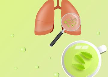 Receita Contra Bronquite: Chá de Mentruz
