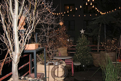 "This image features my garden. To the left of the photo at the back (or top of the picture) my contorted hazel nut (a shrub) is located and his branches have been decorated with white Christmas lights. There is a replica in the form of a light fixture) of The Star of Bethlehem  atop the shrub. Contorted hazelnuts bear the latin name of Harry's Walking Stick.  To the left of this shrub, I have a Christmas tree who is decorated with white lights and has an ""average"" star as her tree topper. To her left (or in the upper right hand corner of the image) is where my Larch is located.  A portion of the branches for my kiwi vines can be seen at the right hand side of the top of te picture. These branches are also decorated with Christmas lights. There are string lights hanging above my garden. My garden is the setting for my three volume book series, ""Words In Our Beak."" You can read about these books in another blog post @ https://www.thelastleafgardener.com/2018/10/one-sheet-book-series-info.html"