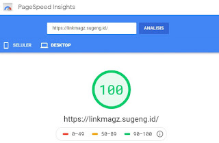 PageSpeed - LinkMagz
