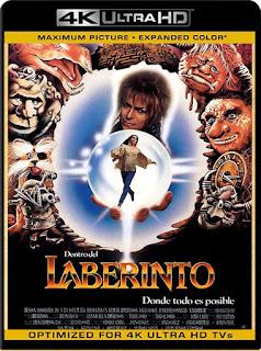 Dentro del laberinto (1986) 4K UHD Latino [GoogleDrive] SilvestreHD