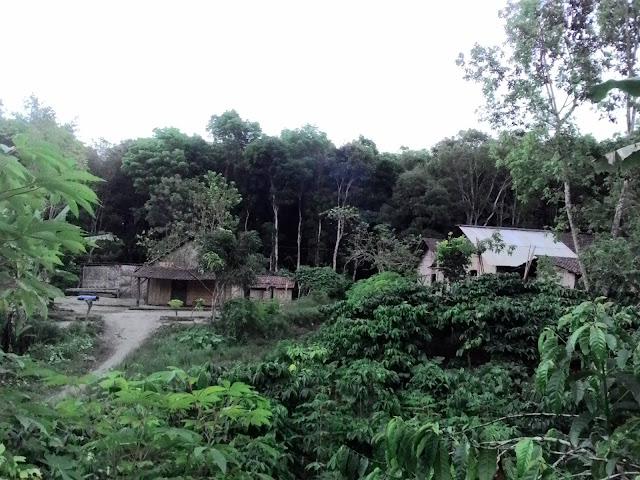 kampung-gunung-raung