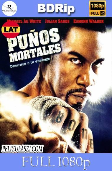 Puños Mortales (2009) Full HD BDRip 1080p Dual-Latino