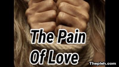 Novel The Pain of Love Full Episode