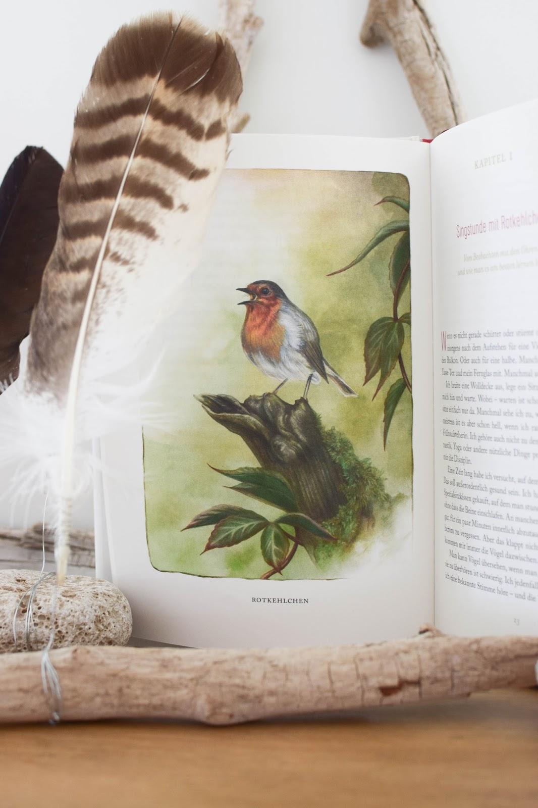 Lesetipp: Federnlesen - VomGlück Vögel zu beobachten. Das Buch für alle Vogelliebhaber und Gartenfreunde