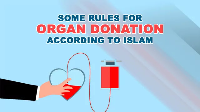 Organ Donation Rules According to Islam