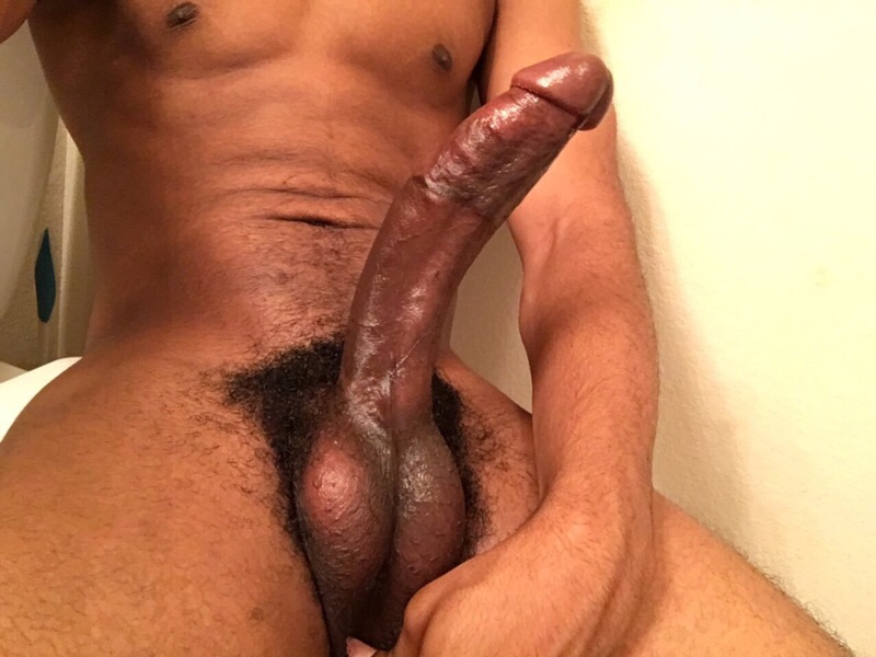 Oiled up black pussy