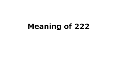 meaning of 222