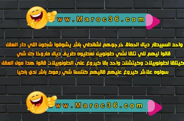 nokat maroc2021