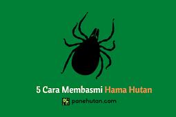 5 Cara Membasmi Hama Hutan