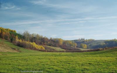http://fotobabij.blogspot.com/2015/11/jesien-na-roztoczu-okolice-turobina.html