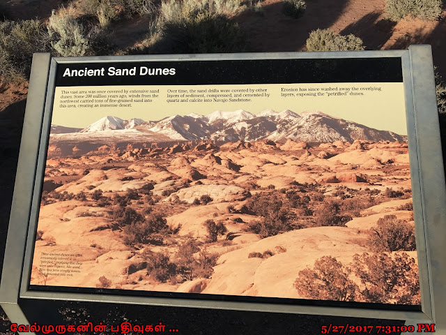 Arches Sand Dunes