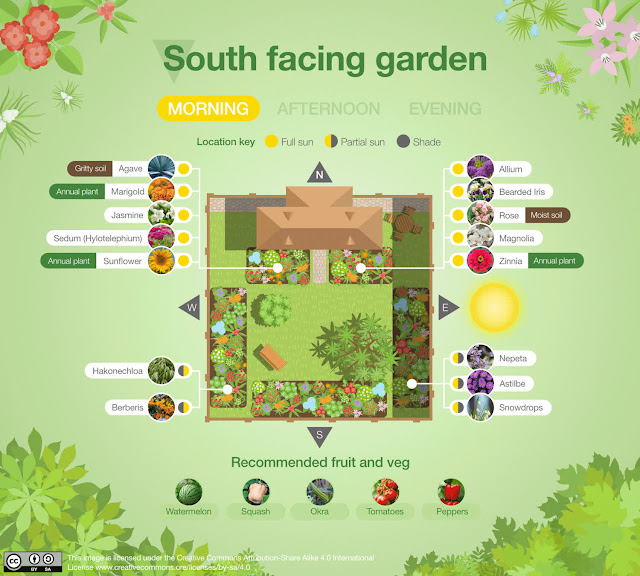 Garden faces southeast morning