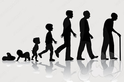 أهمية الإنقسام الميتوزى فى النمو- التكاثر