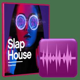 Black Octopus Sound Slap House Essentials