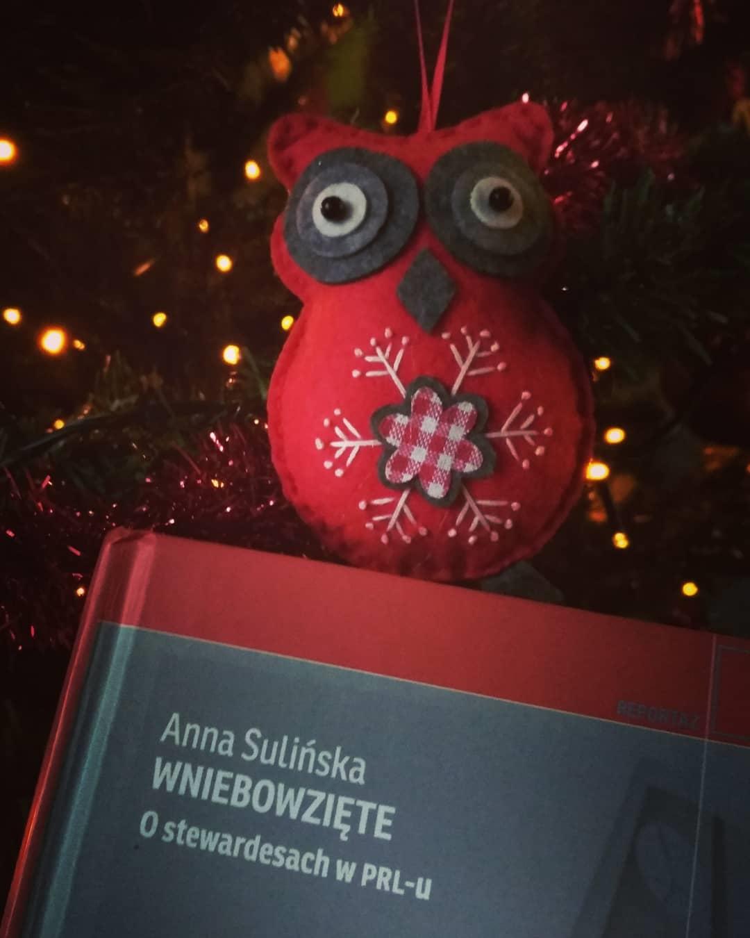 """Anna Sulińska """"Wniebowzięte. O stewardesach w PRL-u"""""""