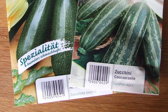 Unterwegs im Garten: Zucchini pflanzen. Eine einfache Anleitung vom Sähen der Samen bis zur Anzucht im topf.