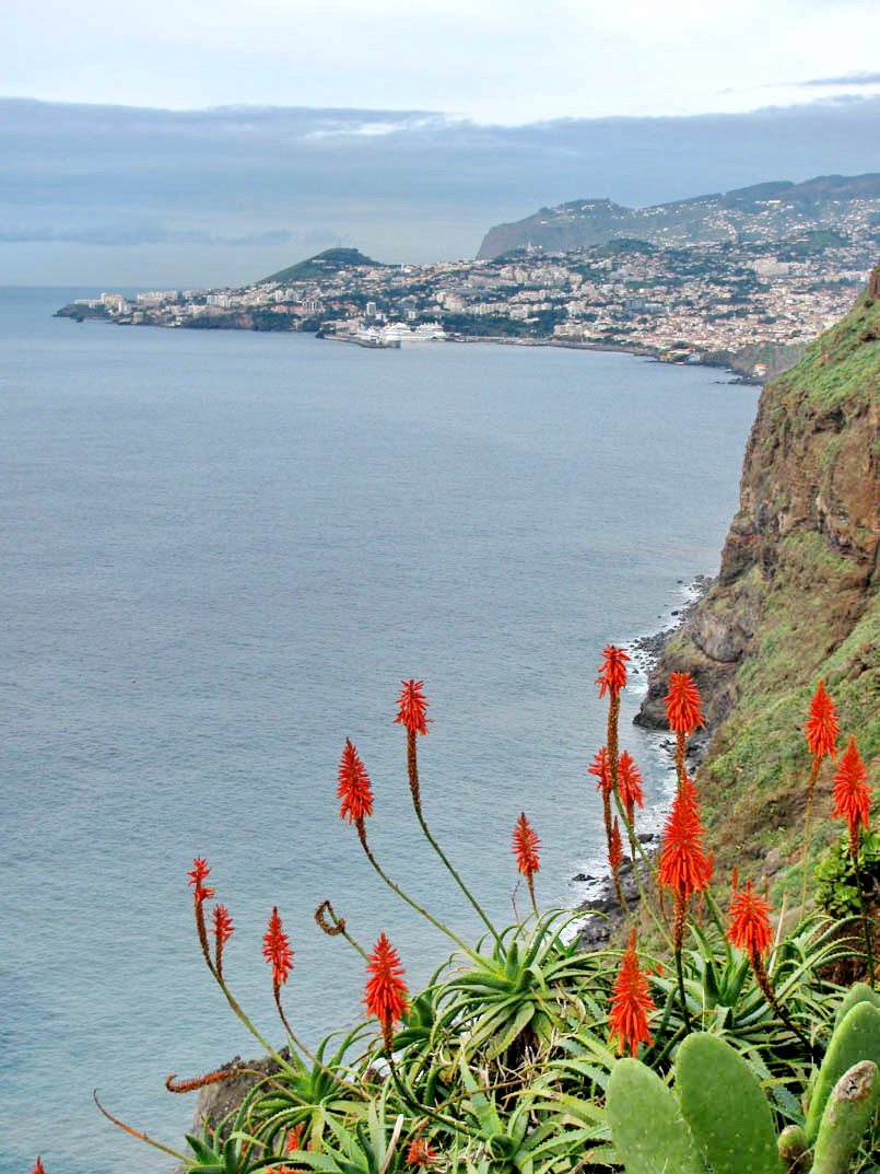 Funchal view
