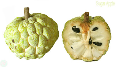 Sugar apple,Sugar apple fruit,সরিফা