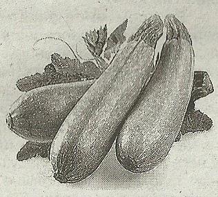 Состав продуктов и способ приготовления варенья из кабачков