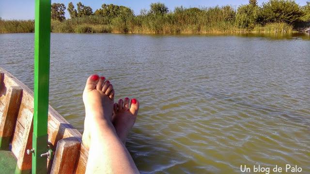 Relax en plena navegación