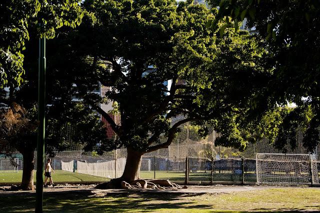 Joven caminando en el parque