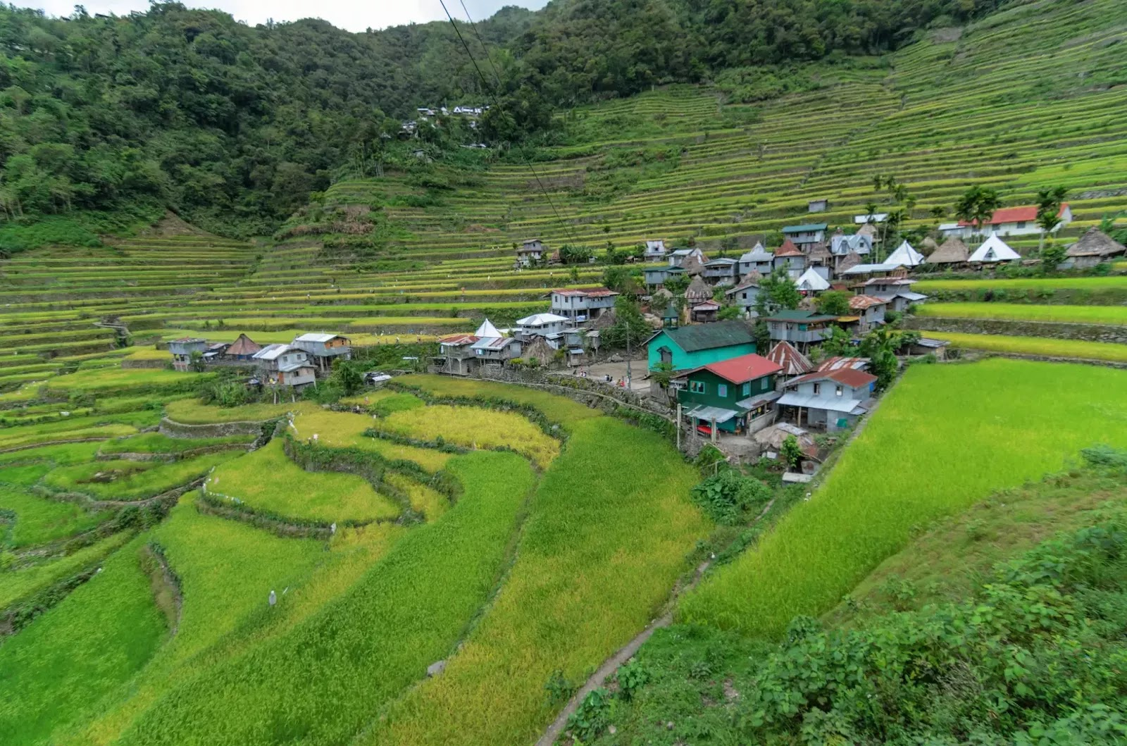 Community Home Cluster Batad Rice Terraces Ifugao Cordillera Administrative Region Philippines
