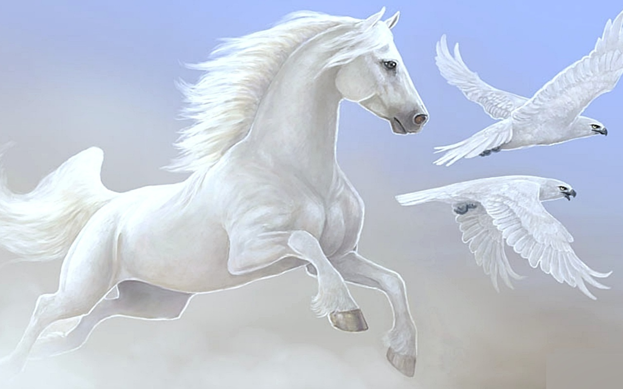 Download   Wallpaper Horse Beauty - horse-wallpaper+(1)  Perfect Image Reference_425910.jpg