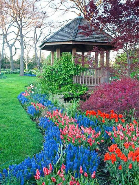 Amazing garden with flowing flowers