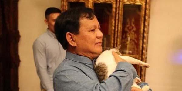 Digendong Prabowo, Bobby Si Kucing Kembali jadi Primadona