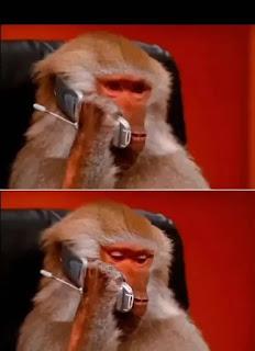 القرد اللي بيتكلم في الموبايل