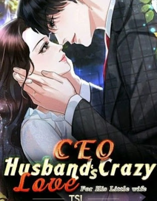 CEO Husbands Crazy Love For His Little Wife Novel