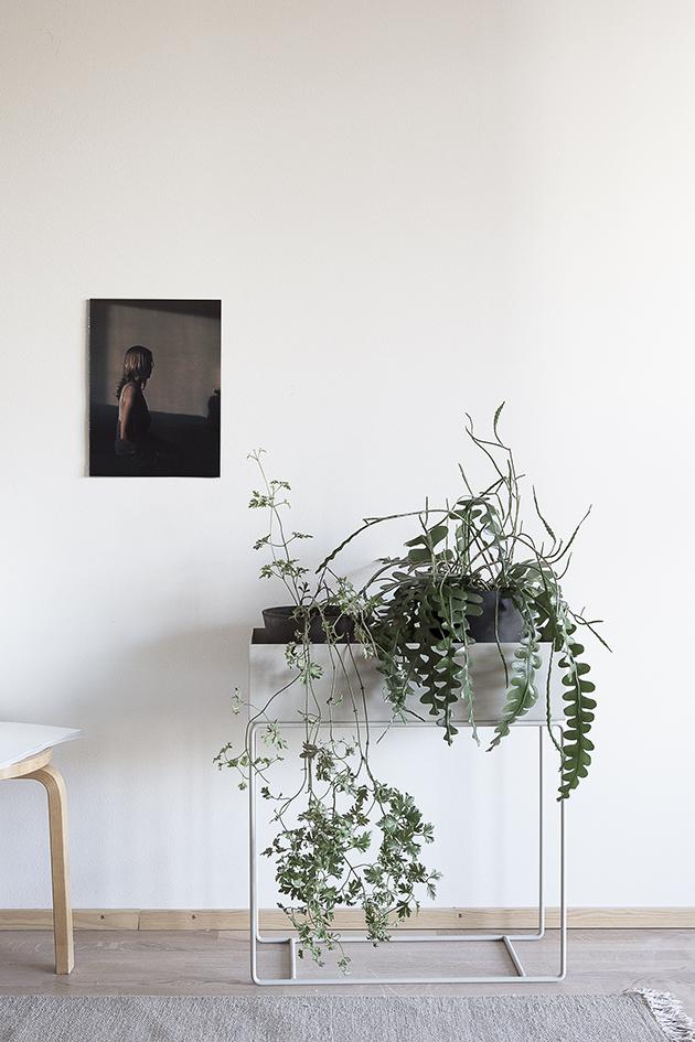 d a d a a ferm living plant box. Black Bedroom Furniture Sets. Home Design Ideas