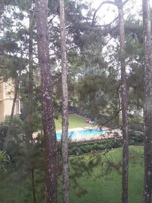 hotel di lembang yang ada kolam renang