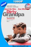 Mi Abuelo es un Peligro (2016) Subtitulado HD 1080P - 2016