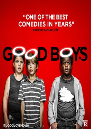 Good Boys 2019 BRRip 480p Dual Audio 300Mb