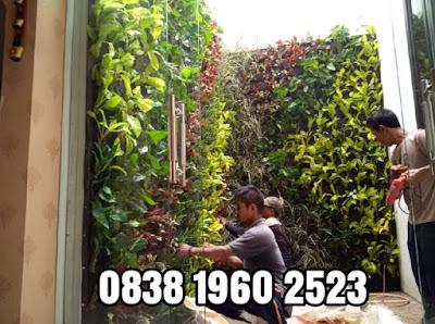 Jasa pembuatan vertikal garden di gunung putri - tukang rumput bogor