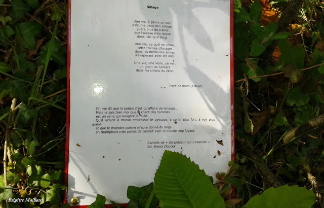 Michel Baglin poème