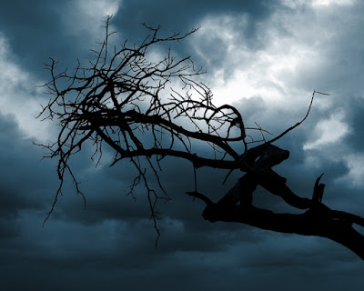 Stormy sky and dead tree by the sea.