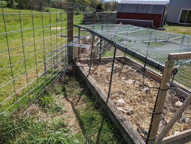 Old veggie garden turned compost bin
