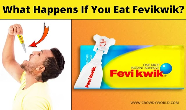 What Happens If You Eat Fevikwik?