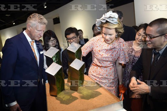 Queen Mathilde of Belgium visit of Daybreak, Chinese and European Contemporary Young Artists Joint Exhibition at Hubei Museum of Art in Wuhan