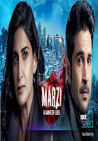 Marzi Season 1 Complete Hindi 720p HDRip ESubs Download