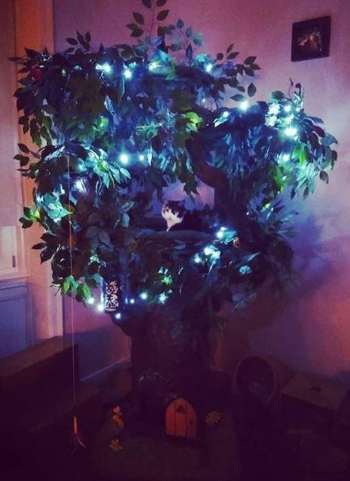 Extra Large Cat Tree