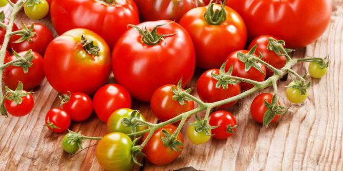 Mengenal Aneka Manfaat Tomat untuk Kesehatan